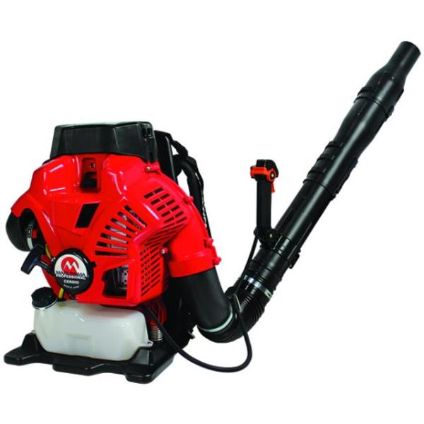 Where to find LEAF BLOWER,  MARUYAMA in Kamloops